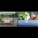 湘南野菜&湘南こだわり食材